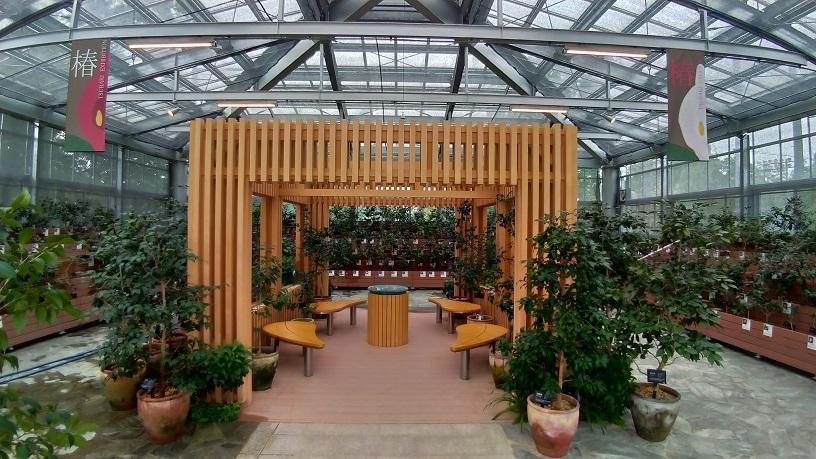 野々市中央公園ののいち椿館2