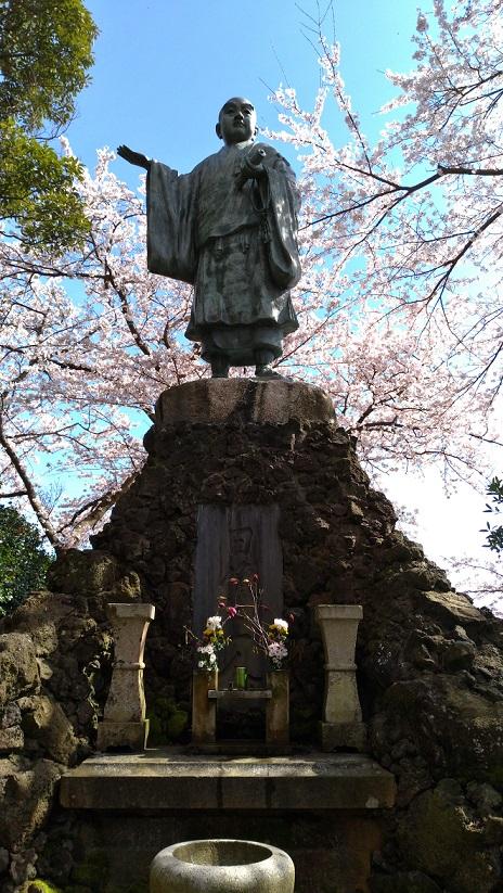 小丸山公園11