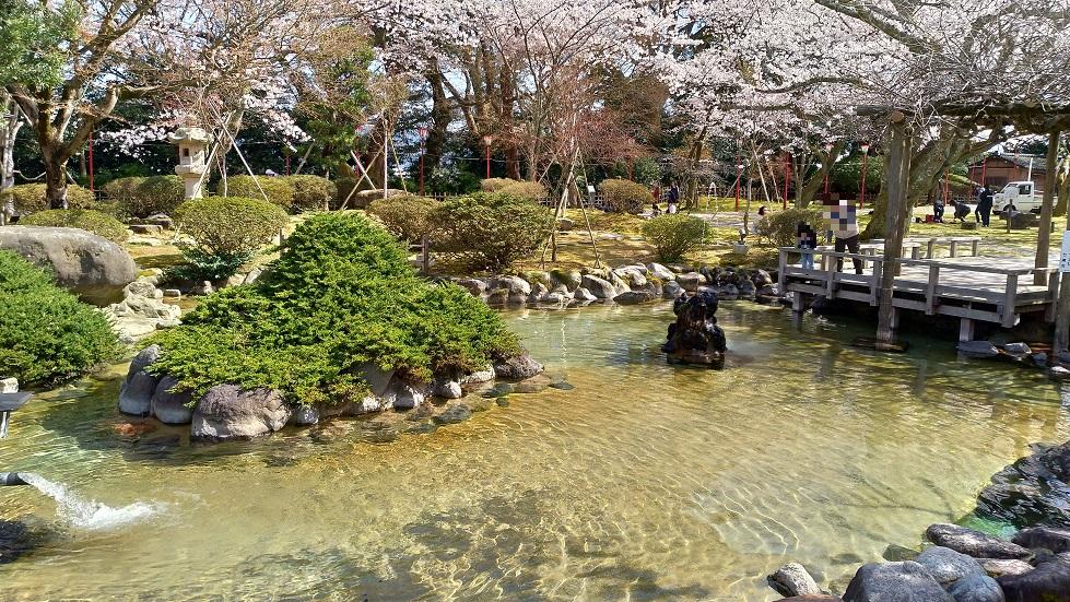 小丸山公園3