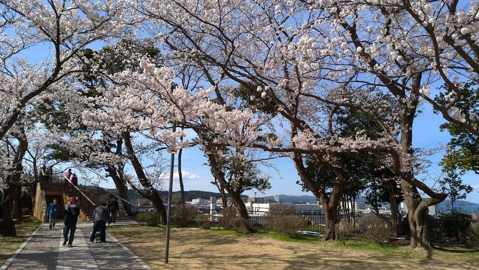 小丸山公園8