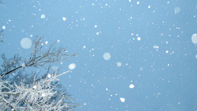 凍結した雪道の歩き方を解説!滑りにくい歩き方のコツを掴もう