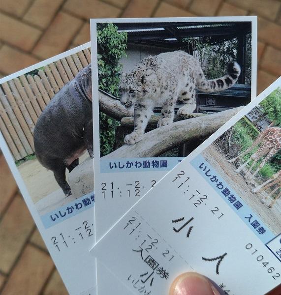 いしかわ動物園3