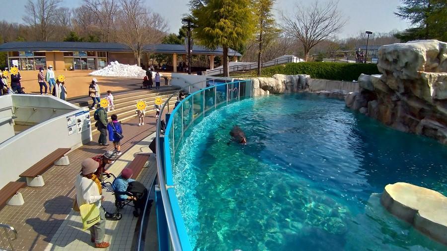 いしかわ動物園7