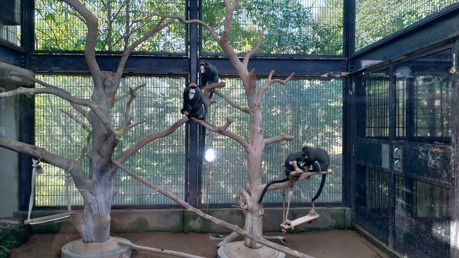 いしかわ動物園8